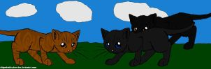 Crowfeather and His Mates by DemonicVampyreWolf