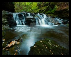 Inversnaid Falls by DL-Photography