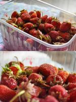 Strawberry Fields Forever by maandarinaaa