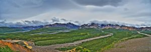 Denali Panorama by pacmangeek