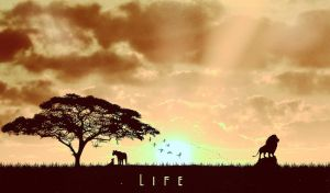 Life by crilleb50