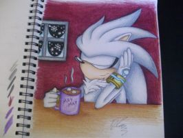 Hot Cocoa on a Winter Day by SonicBornAgain