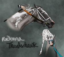 SSS Madonna Thunderhawk by BrindleTail