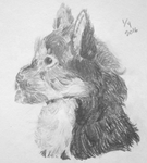 Dog Drawing by Artist-Who-Draws