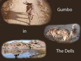 Gumbo in The Dells Wallpaper by 16stepper