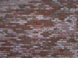 Brick Wall 12 by DonnaMarie113