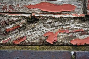 Wooden Texture 3 by stock-photo