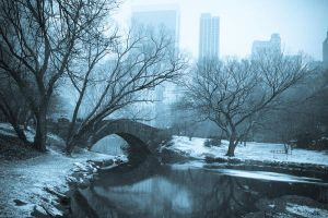Central Park Bridge by blank69