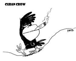 Cuban Crow by RockBullet