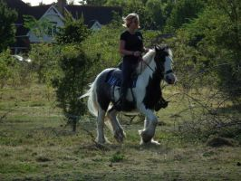 Jogging On A Gypsy Vanner by StarCrossedPsycho
