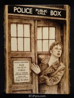 Doctor Who and the TARDIS - Woodburning by brandojones