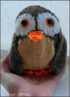 Knitted Owl 1 by Jane-Rt