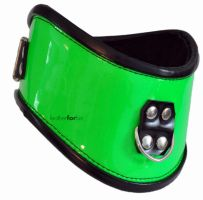 Totally mind-blowing, green posture collar by leatherforfun
