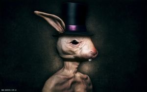 Evil Rabbit by BadKingOnline