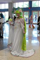 Metrocon 2012 22 by CosplayCousins