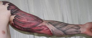 arm with muscle tiss2 Tattoo by 2Face-Tattoo