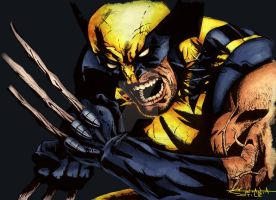 Wolverine by clockworkBAT