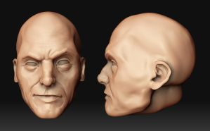 ZBrush: Head by Lepidact