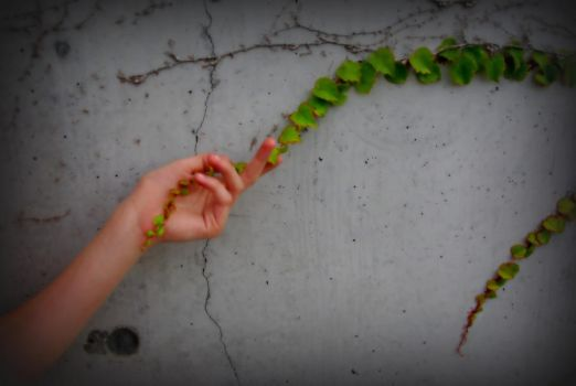 One With The Ivy by EarthPoet