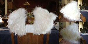 White Feather Wings by StudioSandM