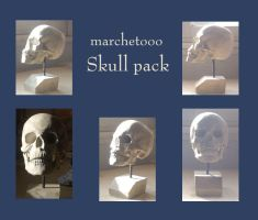 Skull pack by marchetooo