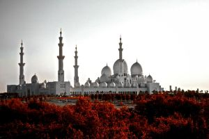 Grand Mosque exterior V by Pic-Prodigy