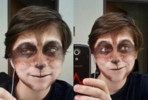 Raccoon Makeup by Frosty-Rain