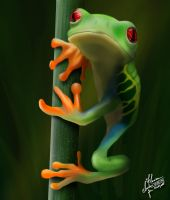 Frog by blink4art