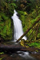 Hemlock Falls by greglief