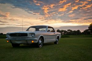 1965 Mustang 003 by Stig2112