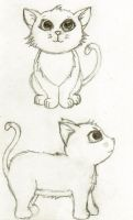Kitten Sketch by BeckyBumble