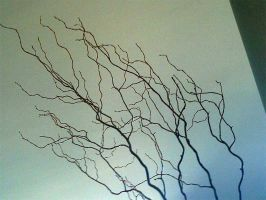 Bare Branches by Beautelle-stock