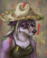 No Birthday Sombreros by Vixen11