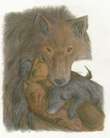 Cubs by Lilliflora