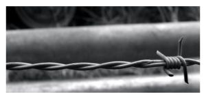 Barbed Wire by bills2020