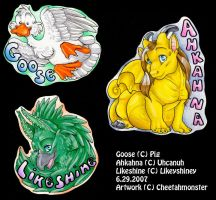 Badge Lot 1 - AC 07 by Quaylak