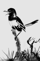 This Black and White World by EarthBirds