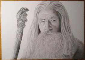 Gandalf the Grey by reacool