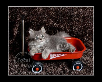 Little Red Wagon 3 by NicoleSlaughter