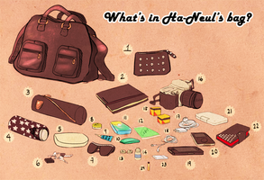 What's in My Bag Meme. by MMXII