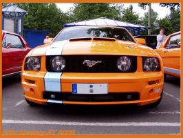 .: Ford Mustang GT :. by Gekko245