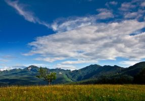 Rarau Mountains by lica20