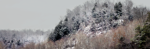 Winter In The Mountains by JonUriah