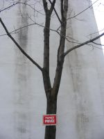 Tree of private... by Redcorp