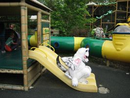 Okami-Down the slide by Hyokenseisou-Cosplay