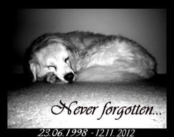 Never forgotten... by RatteMacchiato