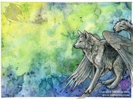 Winged Wolf Vernation by Nambroth