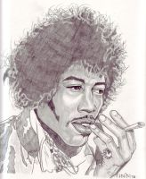 Jimmy Hendrix by SasaBralic