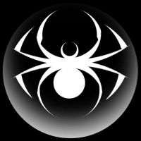 Spider Moon 2 by Invader-Tech