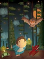 following the owl by serhatalbamya